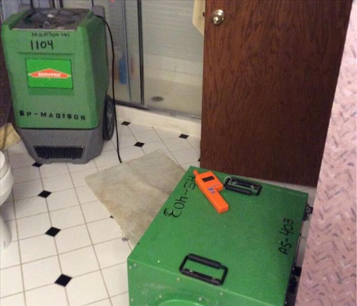 Mold Remediation Mold affecting air quality in Madison home