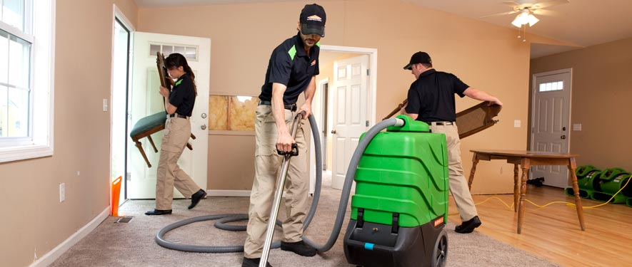 Madison, WI cleaning services